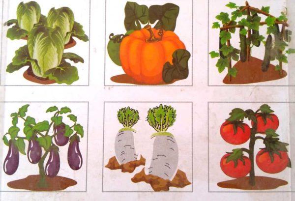 بازل خشبى 9 قطع مكعبات يكون 6 أشكال خضروات